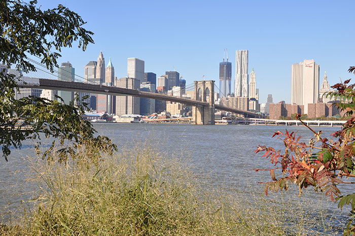 que-ver-nueva-york-puente